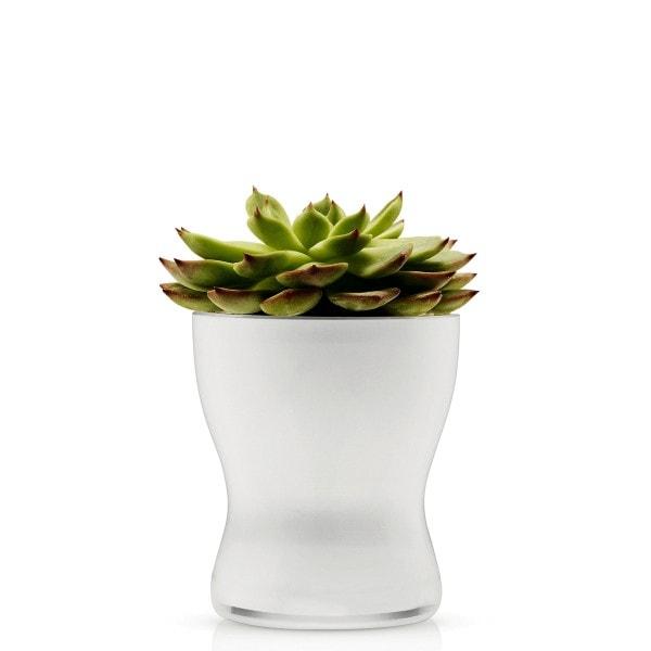 Eva Solo Blumentopf aus Glas selbstbewässernd 11cm weiß