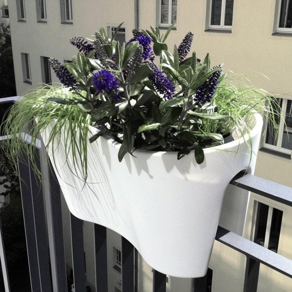 rephorm Blumenkasten STECKLING DUO weiß
